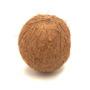 Coconut Lip Balm Flavour