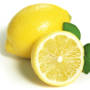 Lemon Oil -  Citrus Limon