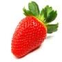 Strawberry Lip Balm Flavour